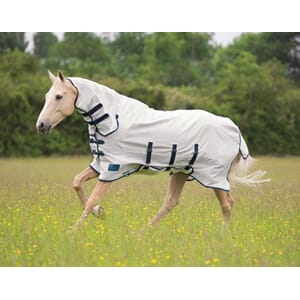 Shires Tempest plus sweet-itch combo